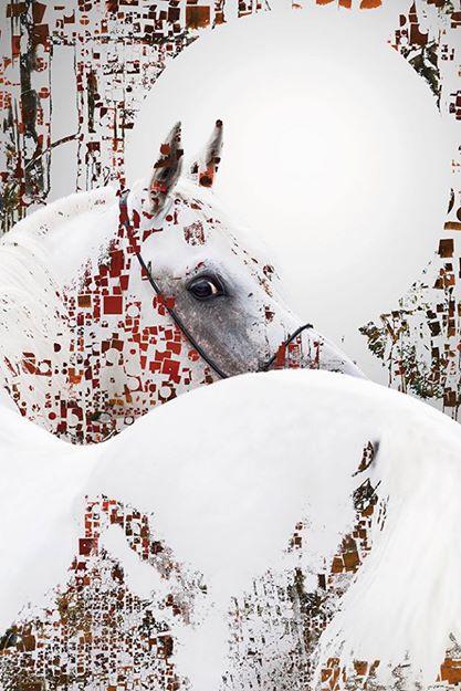 Alain Vaissière- Untitled- Digital Art (100x100 cm.)