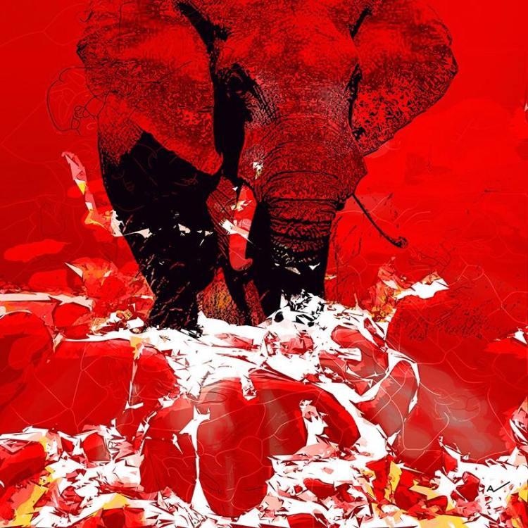Elephantasia 100x100